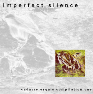 imperfect silence
